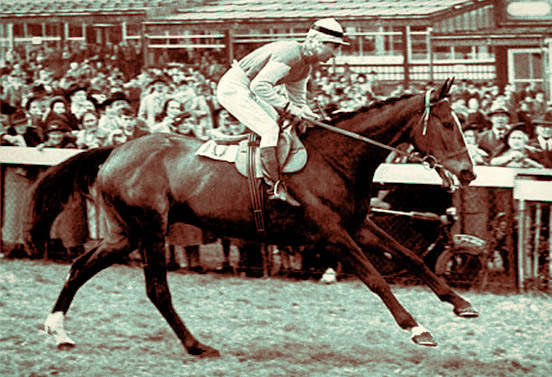 Cottage Rake - Cheltenham Gold Cup (1948) / Daily Mail (p)
