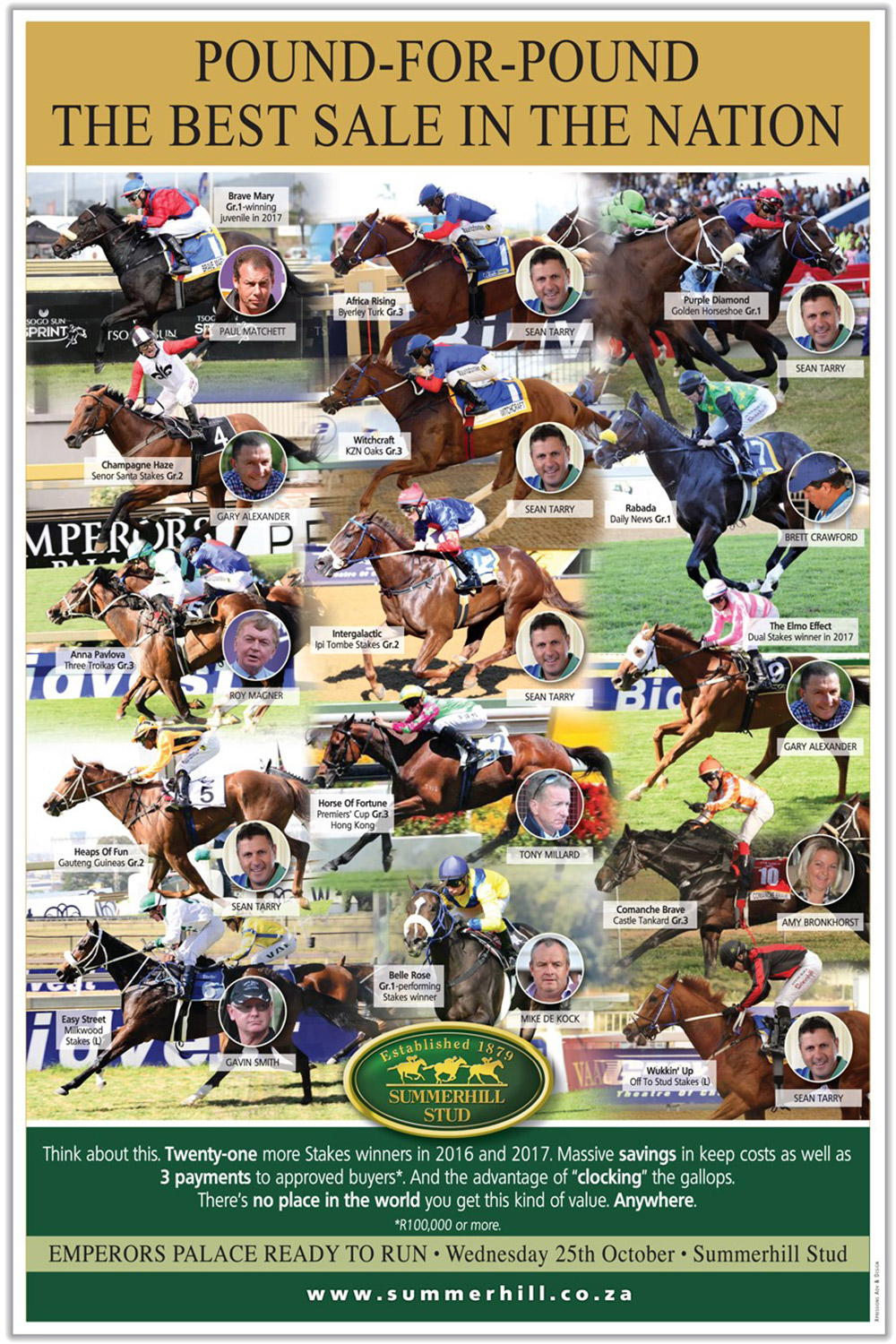 Best Racehorse Sale in The Land