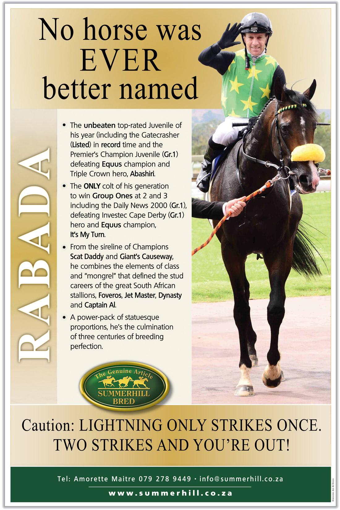 Summerhill Rabada Stallion