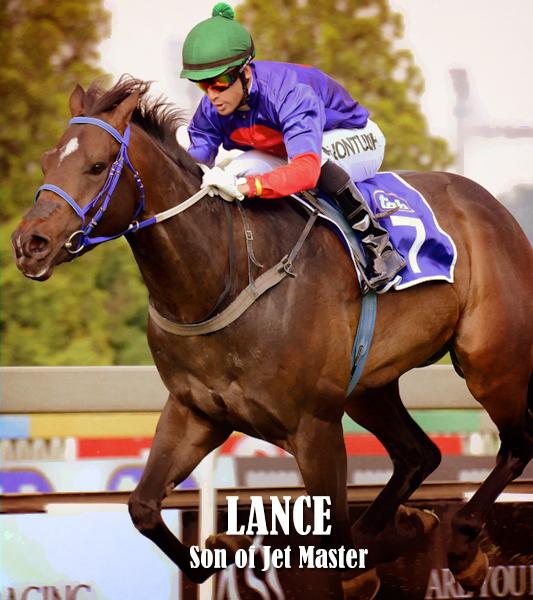 Stallions-Thumbnails-Lance.jpg