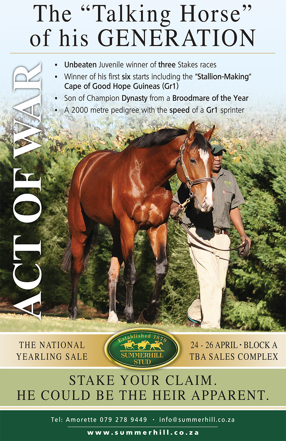 Act of War by Dynasty, National Yearling Sale