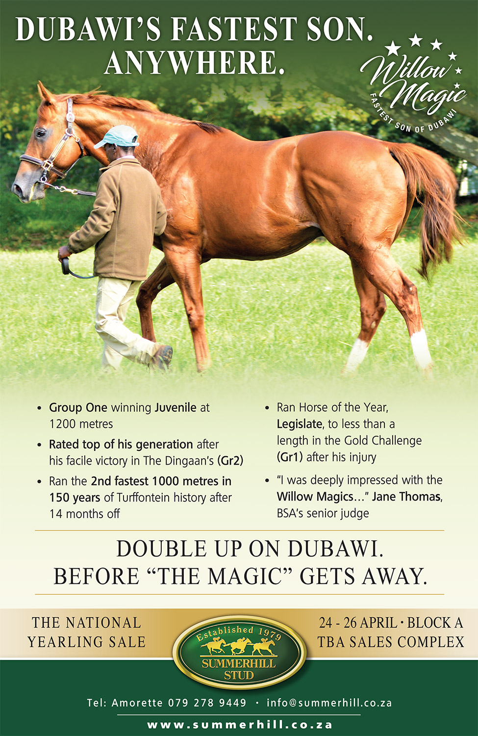 Willow Magic by Dubawi, National Yearling Sale