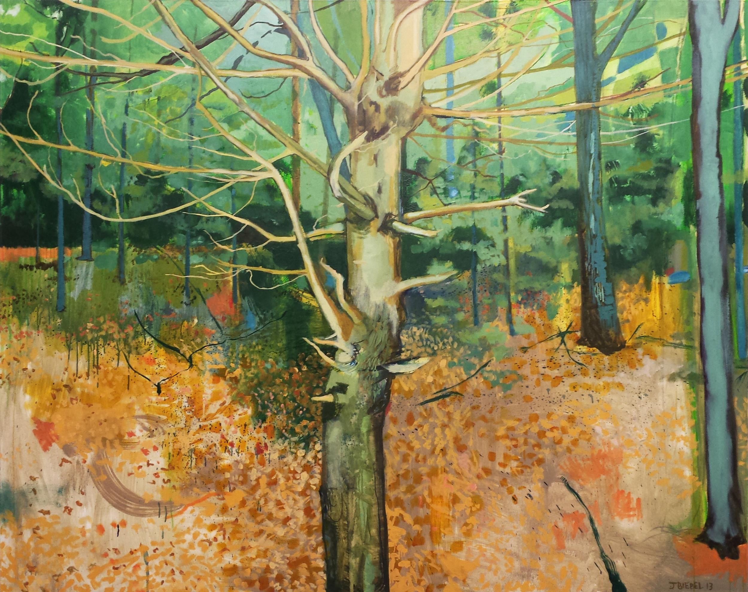 Portrait of a Tree (Walden)