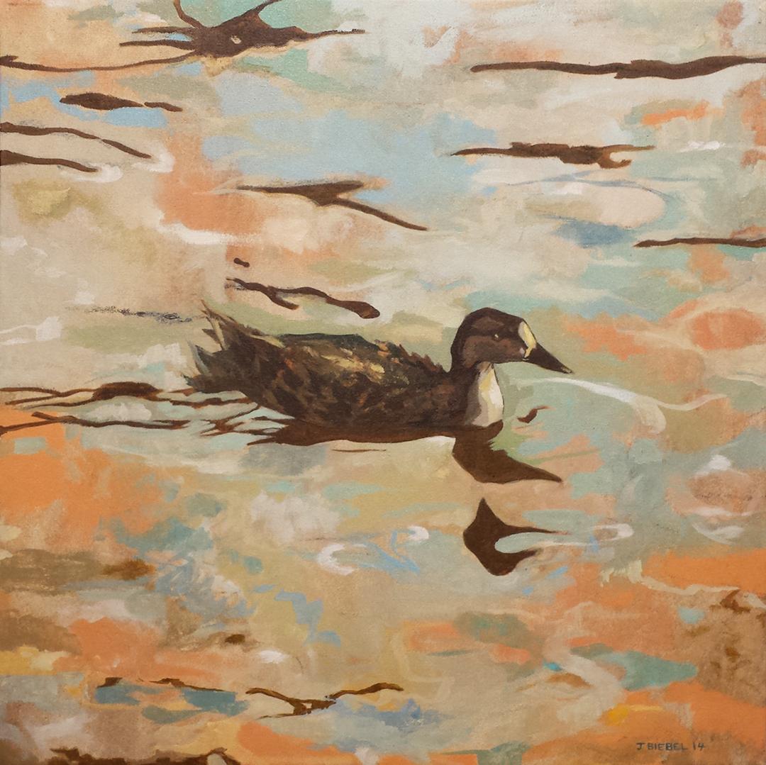 Duck on Walden Pond