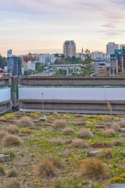 School of Engineering, University of Auckland,NZ