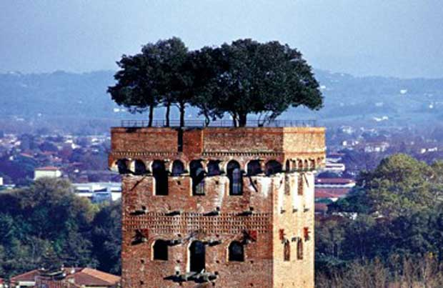 Lucca green roof, Italy, photograph courtesy of livingroofs.org