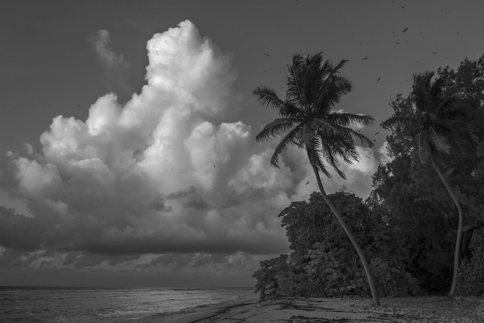Seychelles_60.jpg