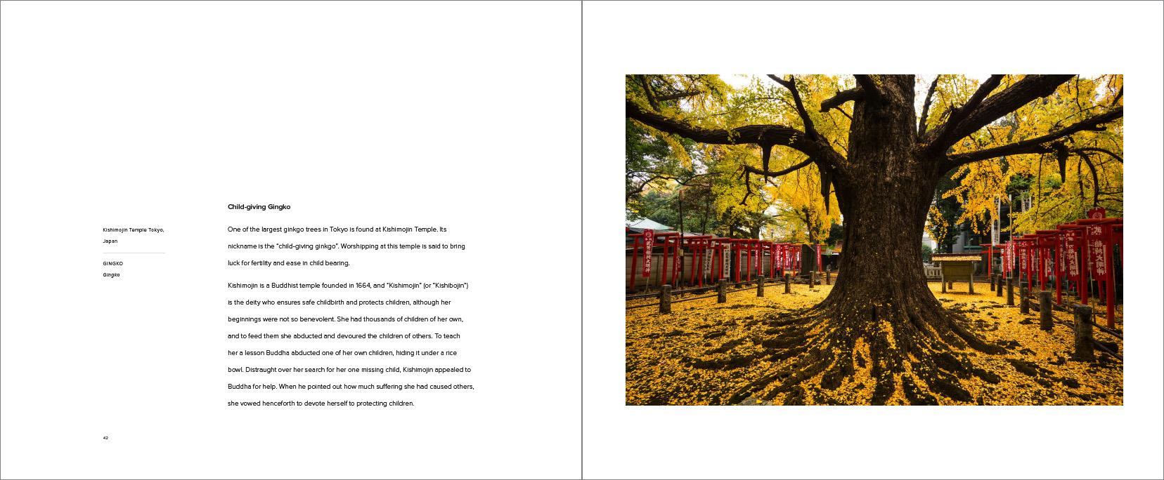 Trees_-24.jpg