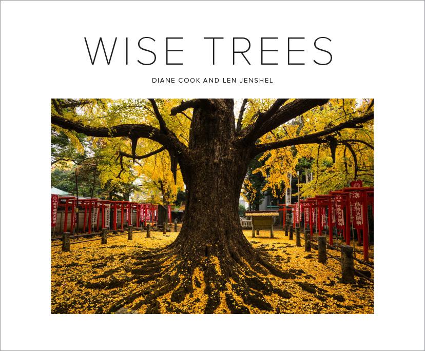 Trees_Covers-3.jpg