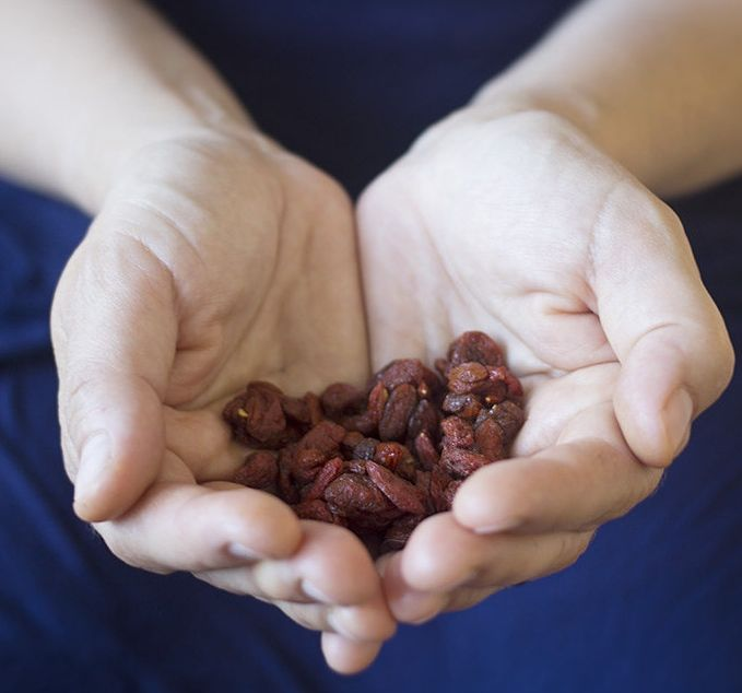 Goji Berries ( Gou Qi Zi ), a delicious herb used for Blood Deficiency, which benefits the Liver, Kidney and Lung organ systems.  Photo By  Stacy De La Rosa .