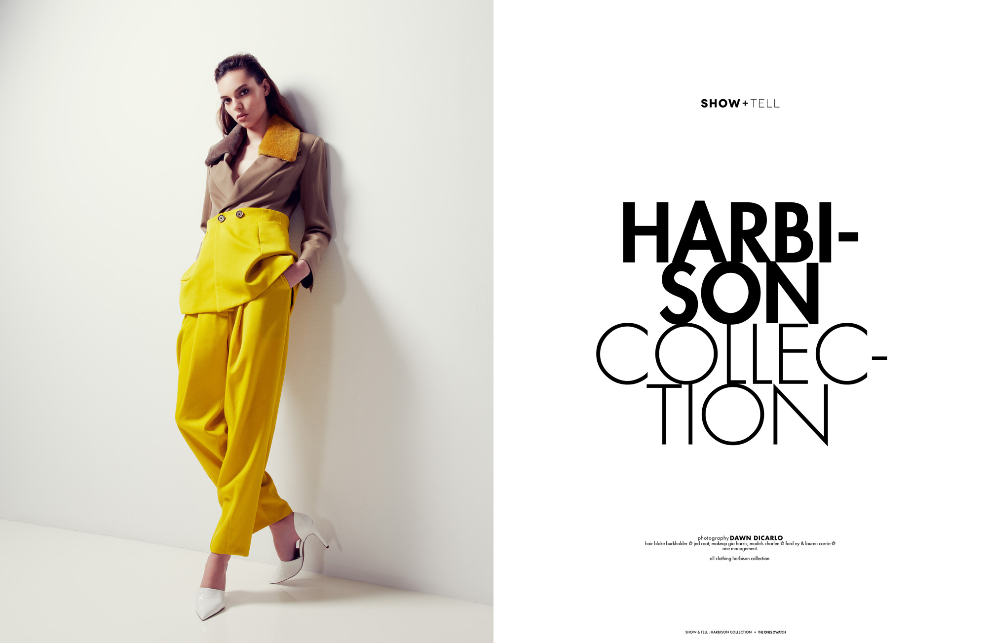 TO2W-ShowTell-HarbisonCollection.jpg