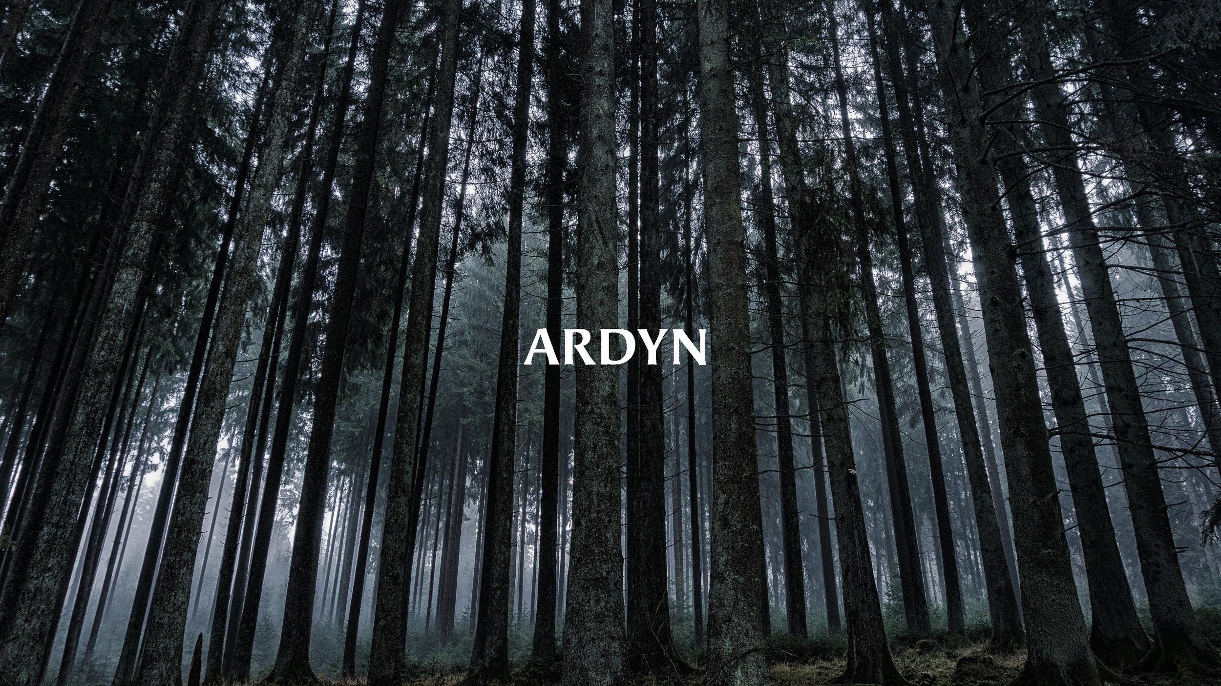 Ardyn Proposal_Page_01.jpg