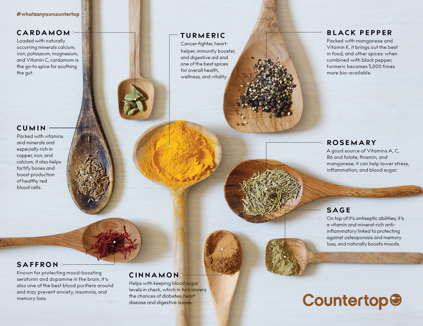 SPICES_101.jpg