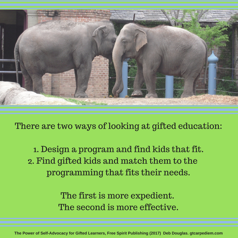 two ways of looking at gifted ed.png
