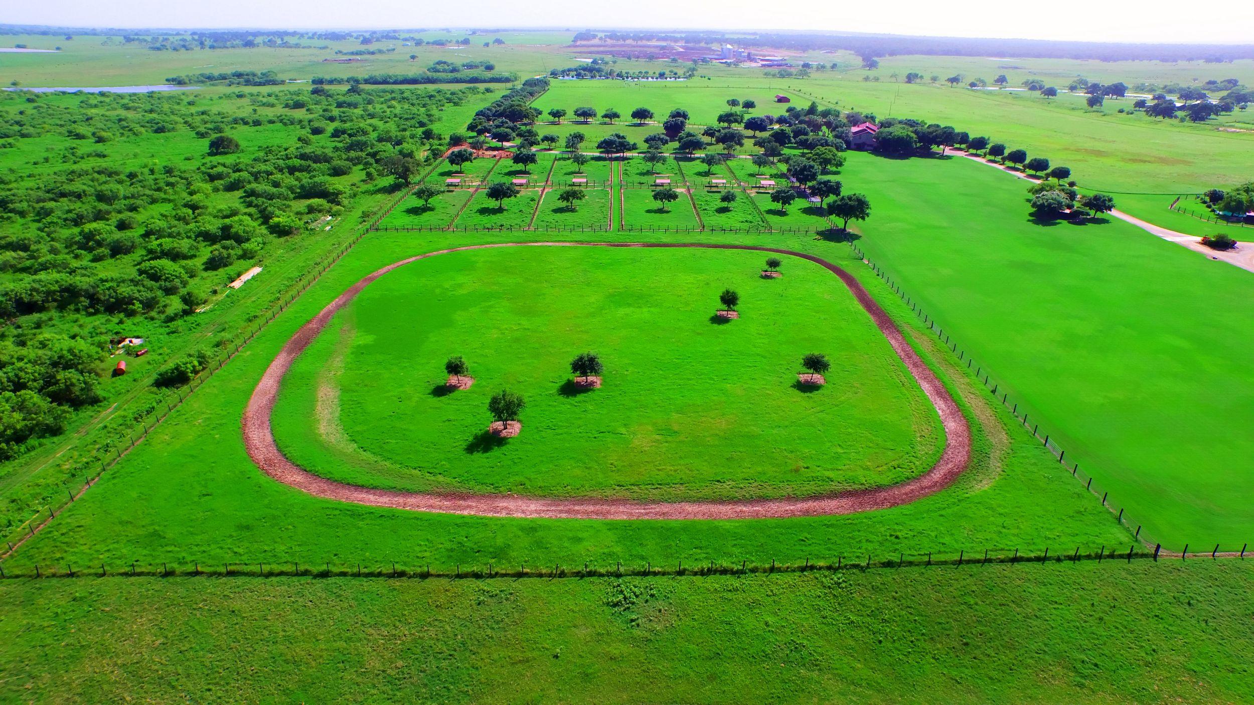 horse track.jpg