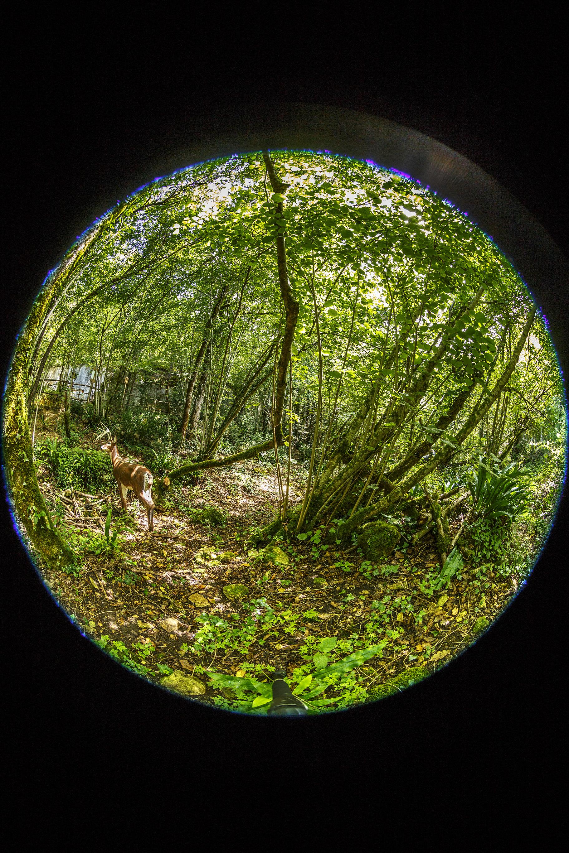 Les Grottes du Roc de Cazelle-3.jpg