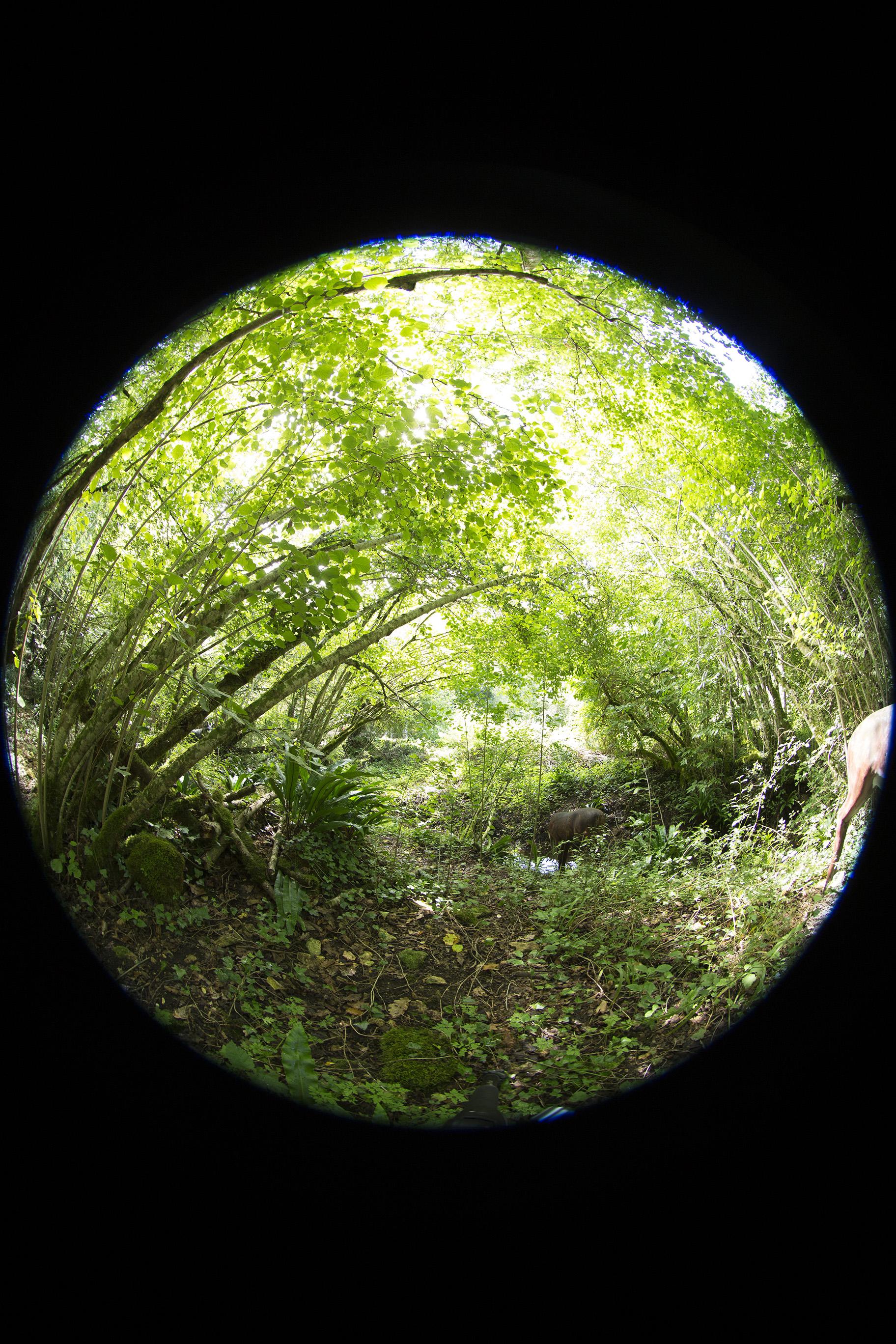creer-une-visite-virtuelle.com_HDR_Roc_de_cazelle-12.jpg