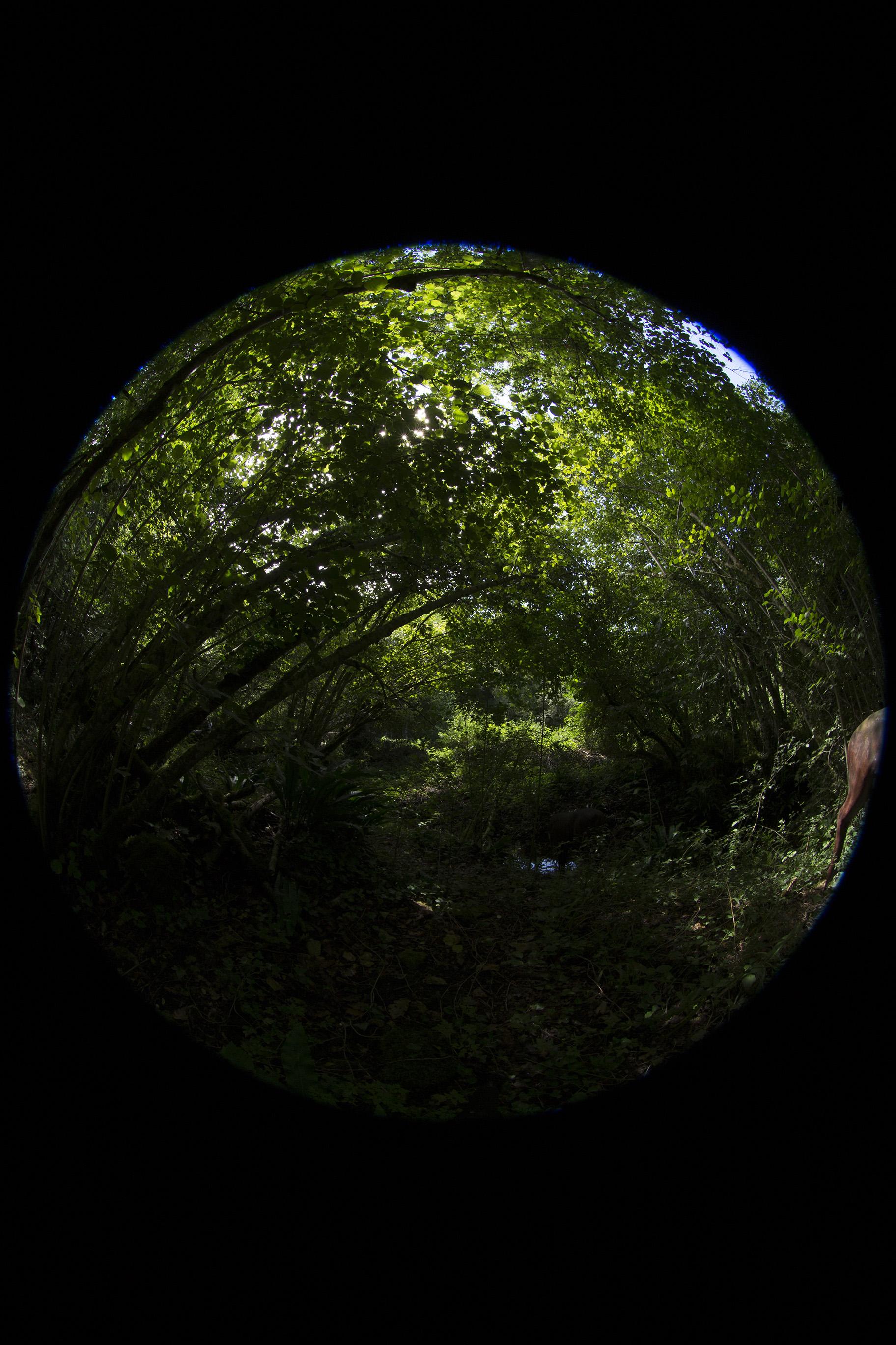 creer-une-visite-virtuelle.com_HDR_Roc_de_cazelle-10.jpg