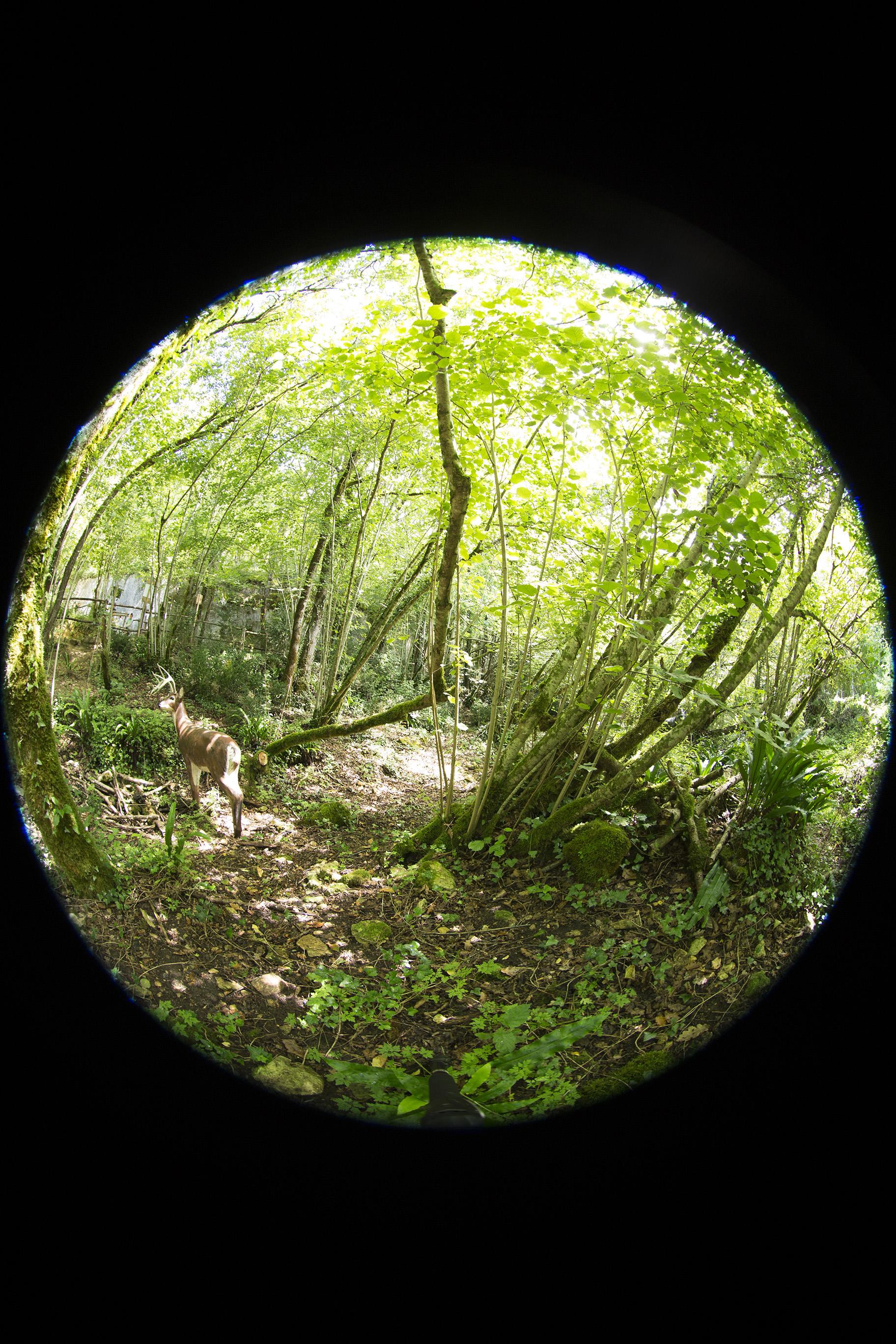 creer-une-visite-virtuelle.com_HDR_Roc_de_cazelle-9.jpg