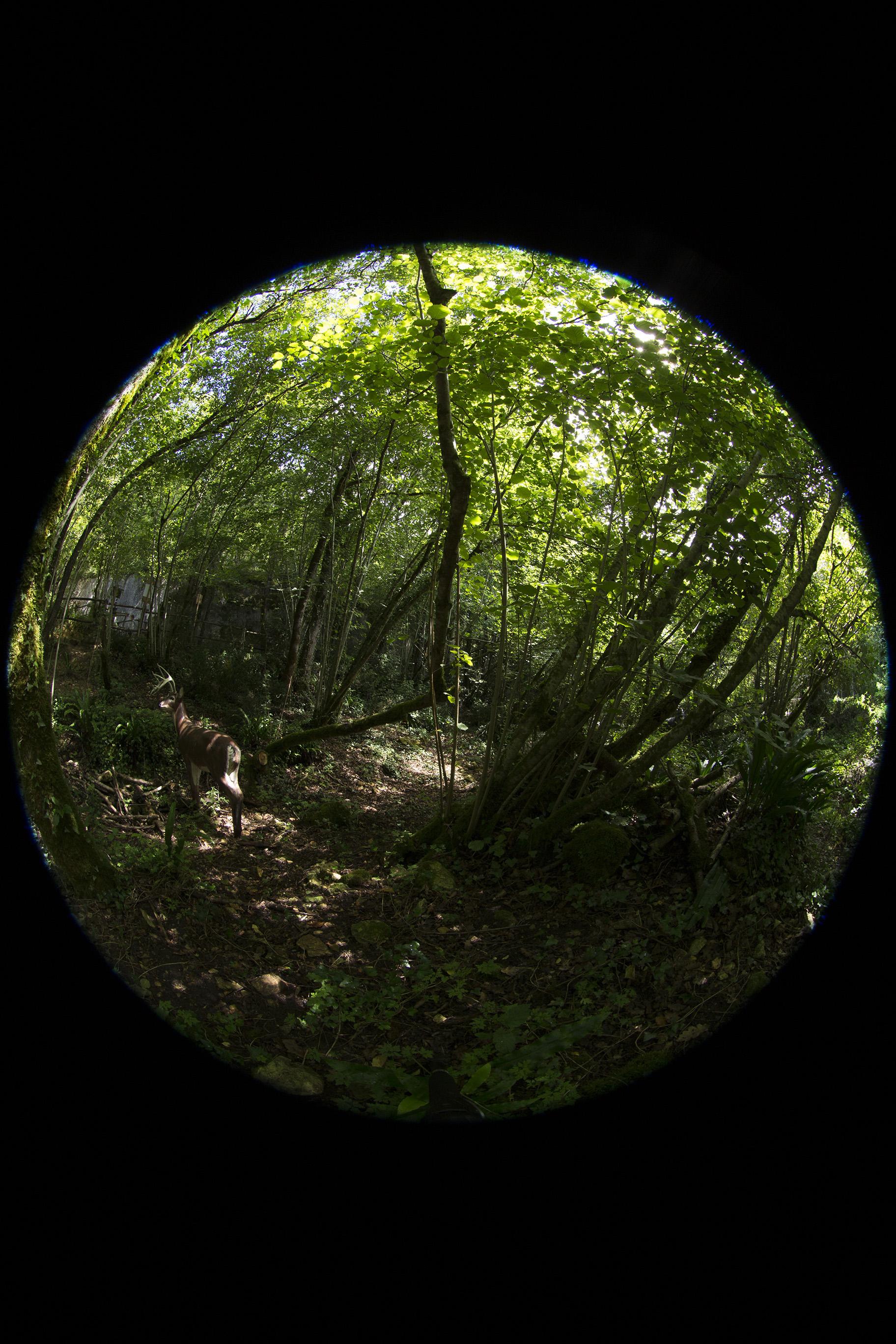 creer-une-visite-virtuelle.com_HDR_Roc_de_cazelle-7.jpg