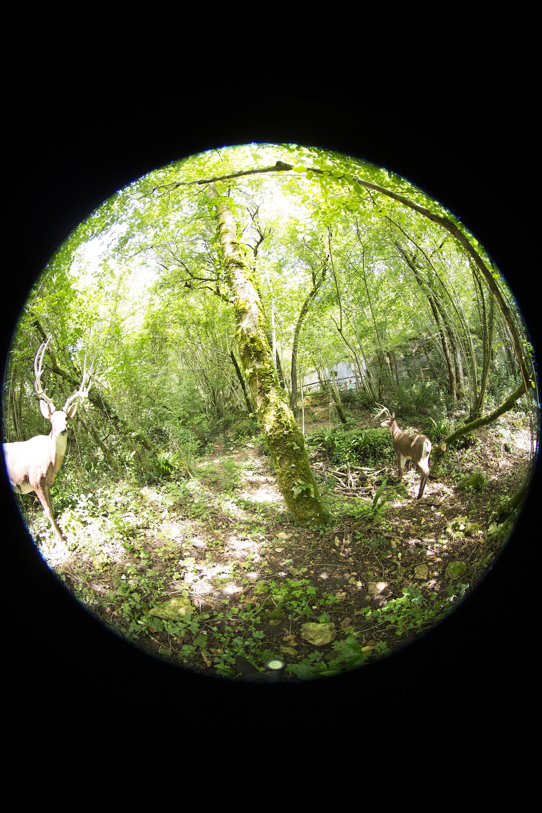 creer-une-visite-virtuelle.com_HDR_Roc_de_cazelle-6.jpg