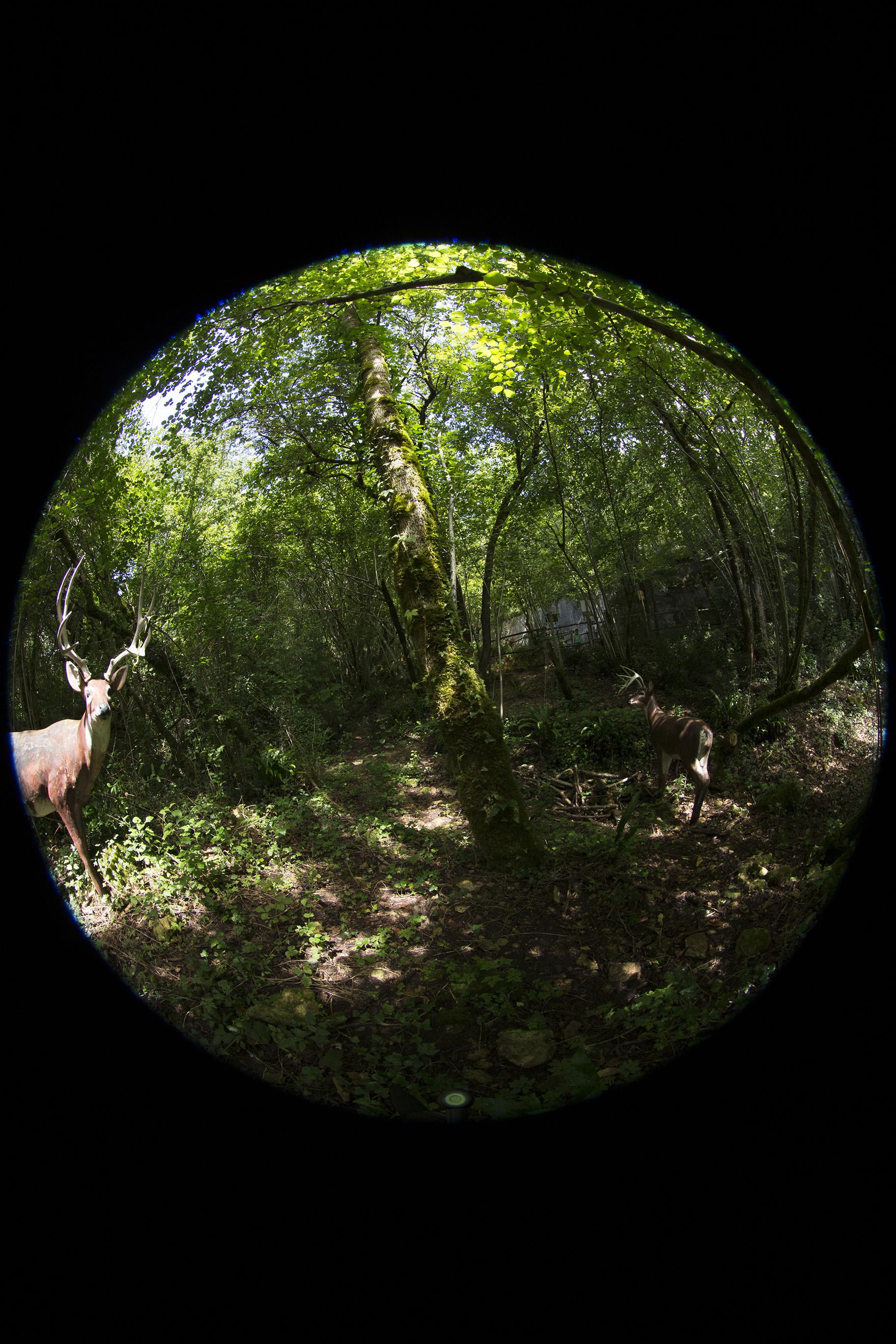 creer-une-visite-virtuelle.com_HDR_Roc_de_cazelle-4.jpg