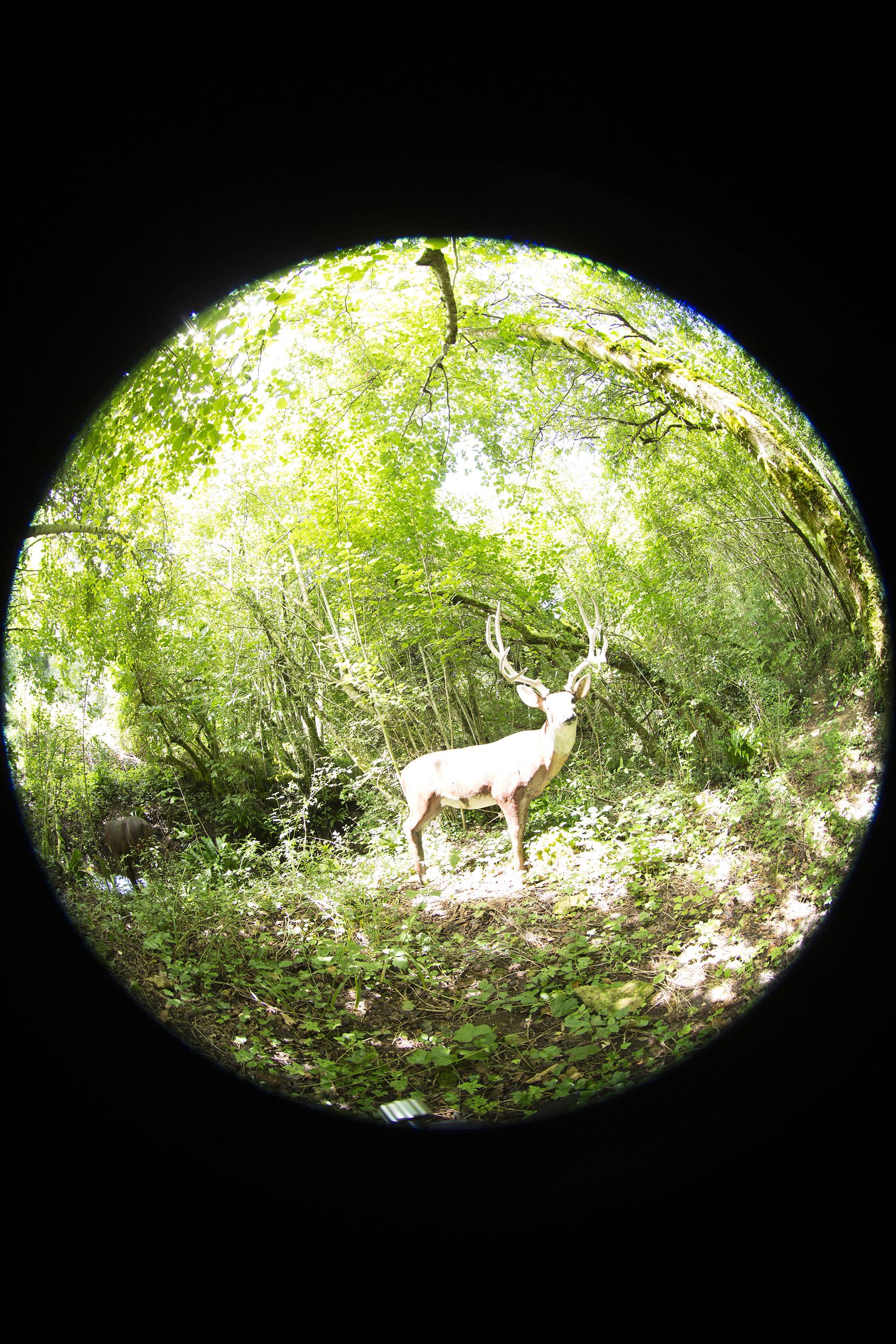 creer-une-visite-virtuelle.com_HDR_Roc_de_cazelle-3.jpg