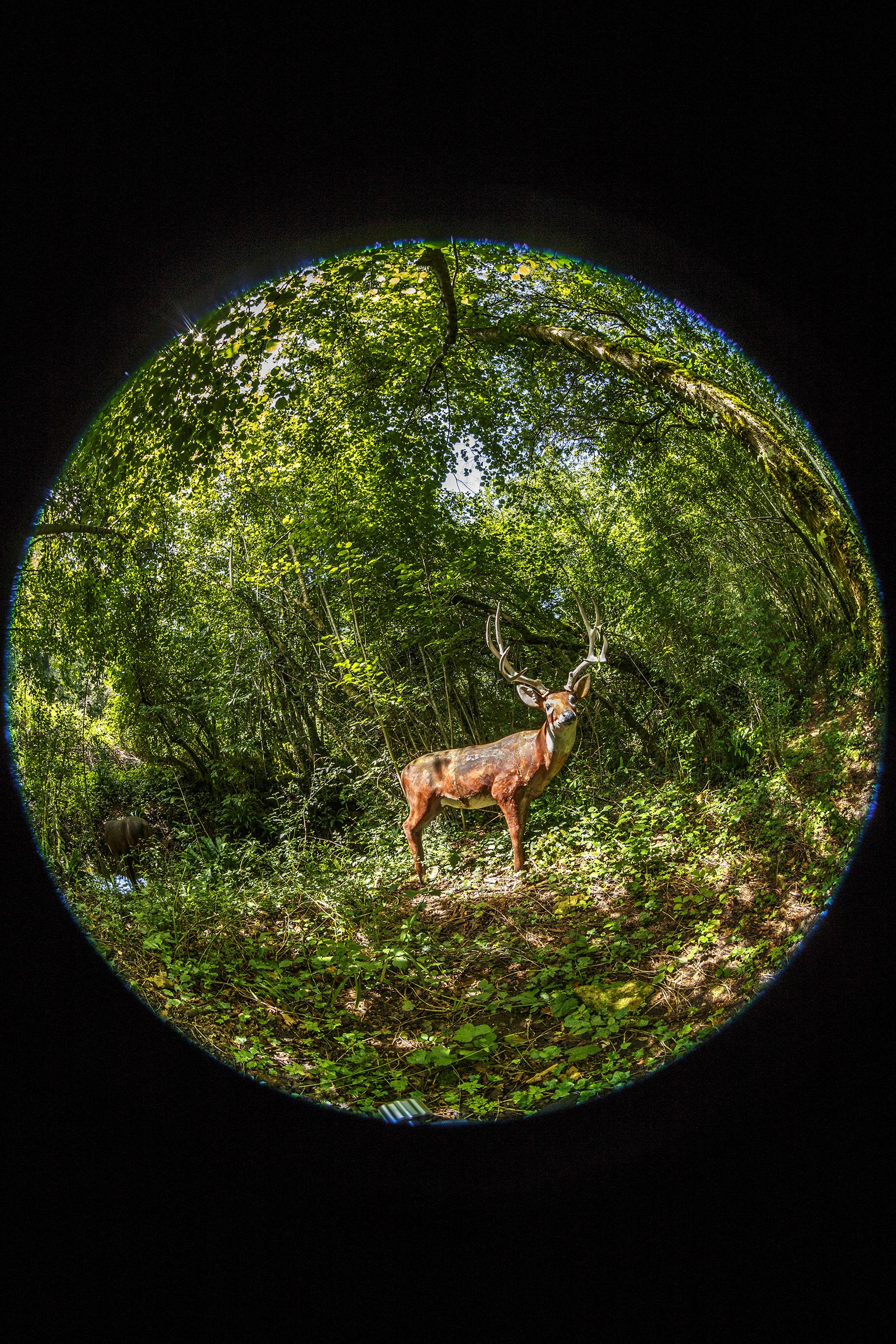 creer-une-visite-virtuelle.com_HDR_Roc_de_cazelle-2.jpg