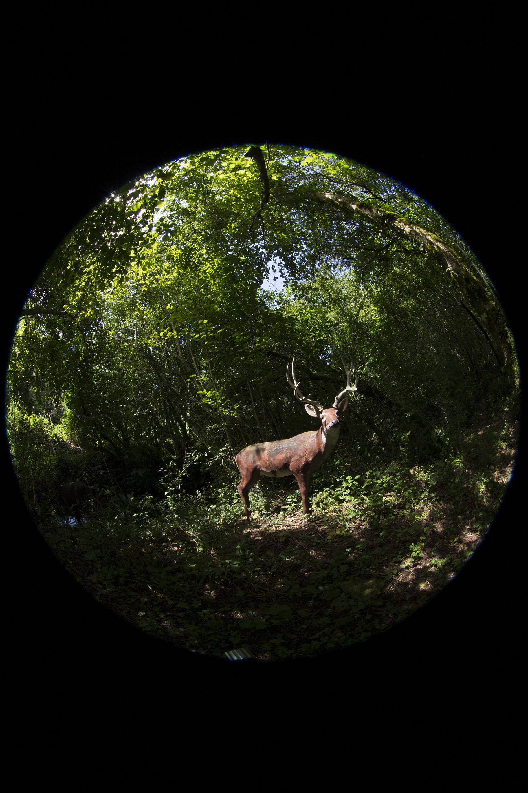 creer-une-visite-virtuelle.com_HDR_Roc_de_cazelle-1.jpg