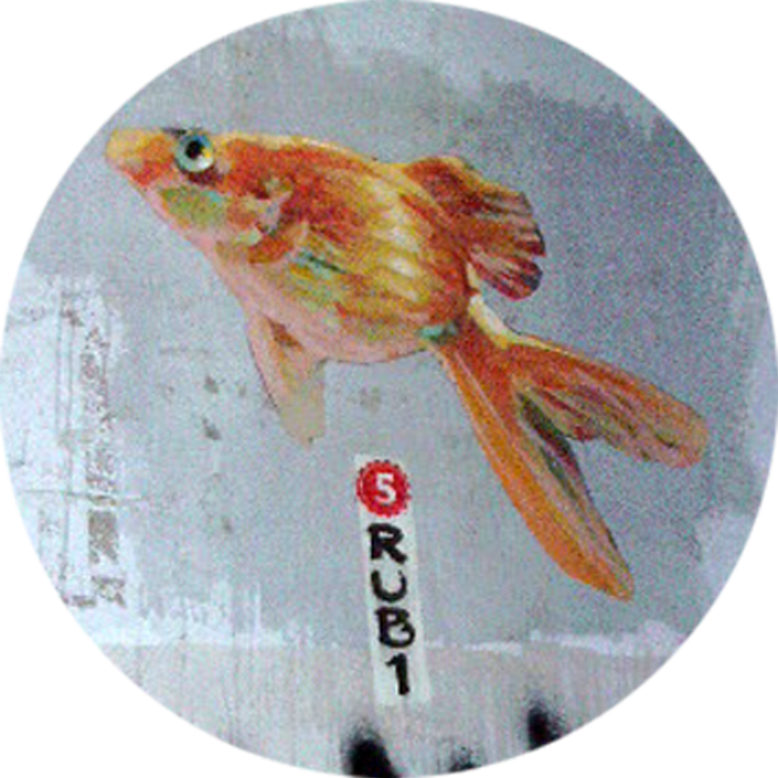 fish5.png