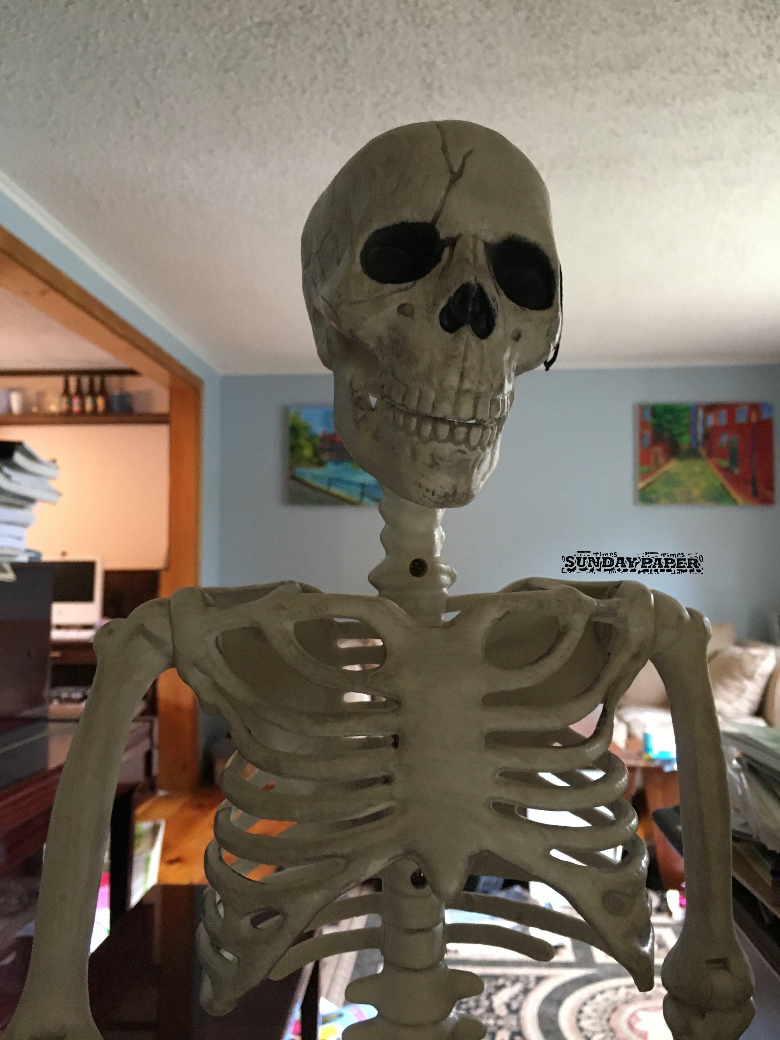 Skeleton Decoration.JPG