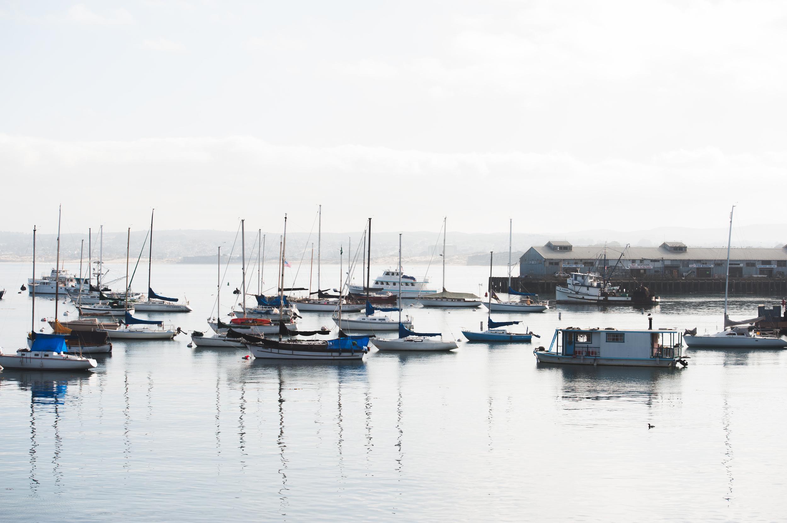 Monterey Bay 10.jpg