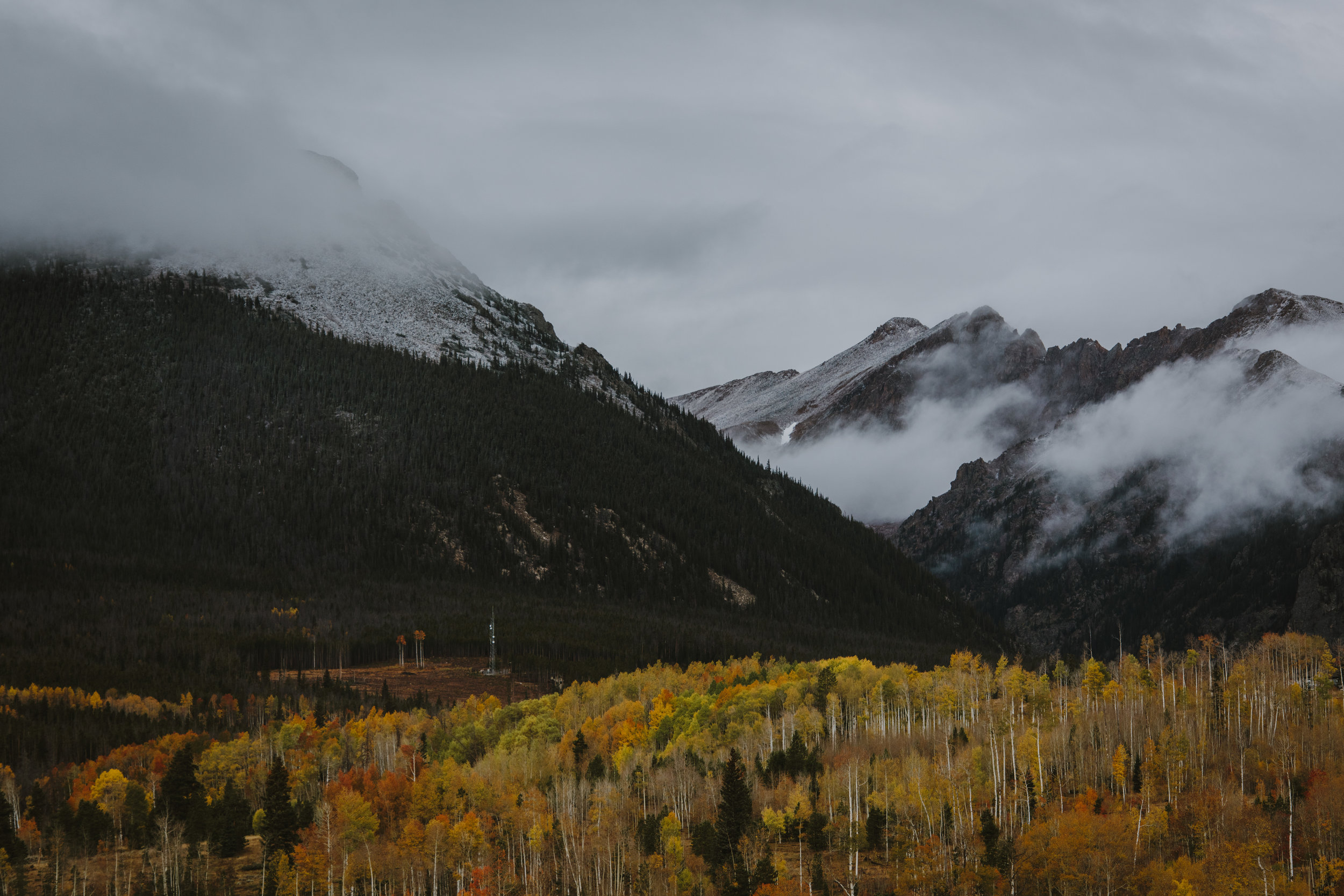 CO 18.jpg