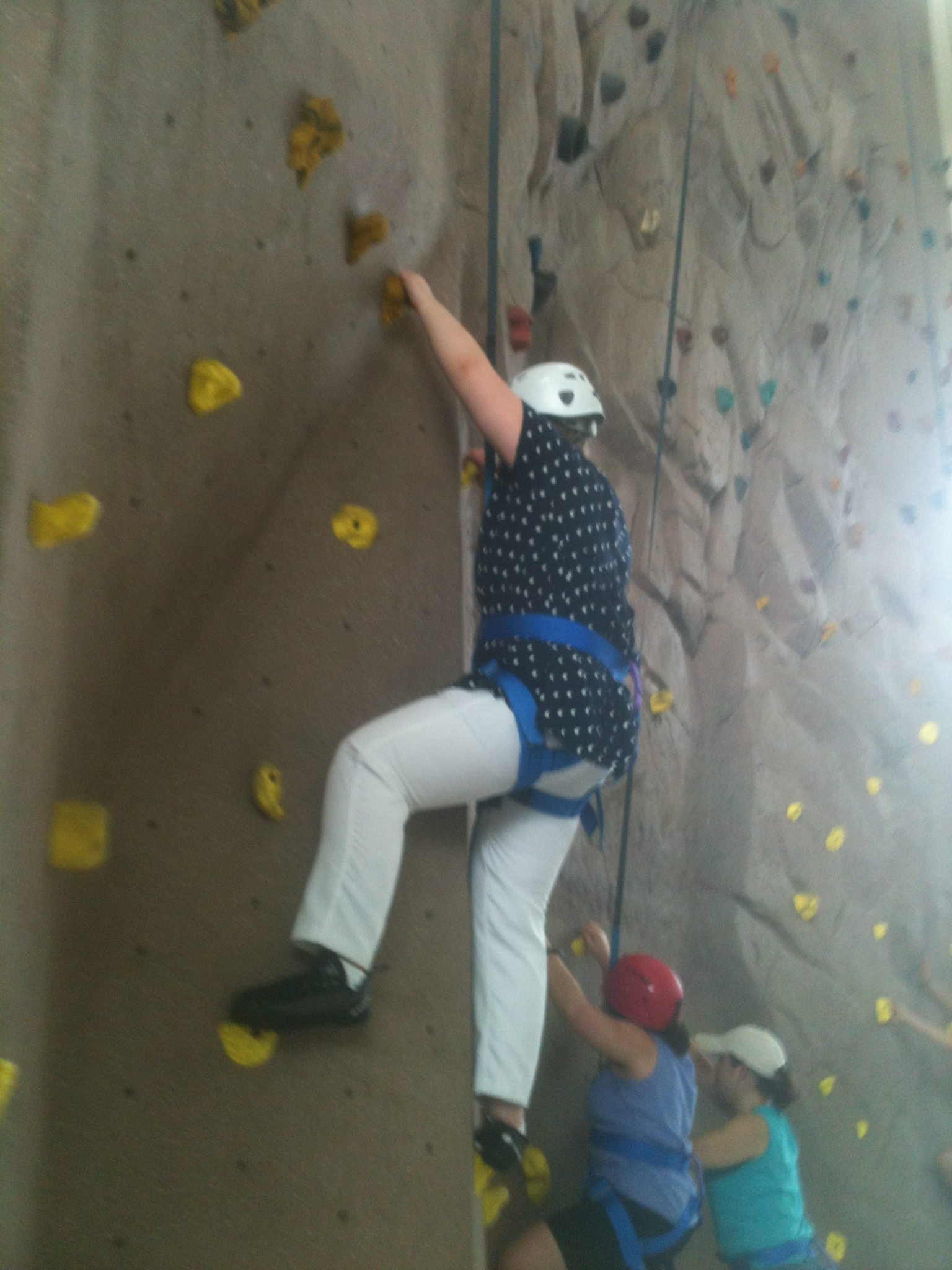 2012 STEP students tackle an indoor rock wall.