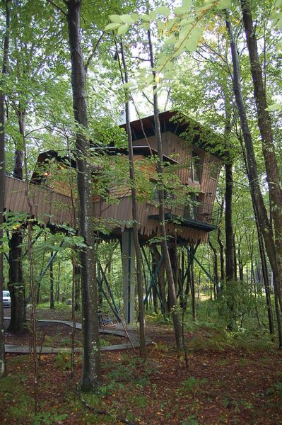 tn_Treehouse on approach.jpg