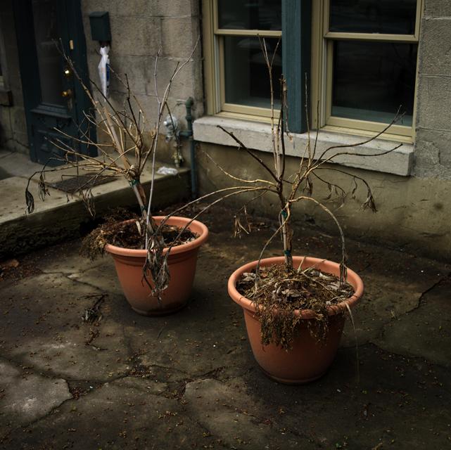 34 Two pots.jpg