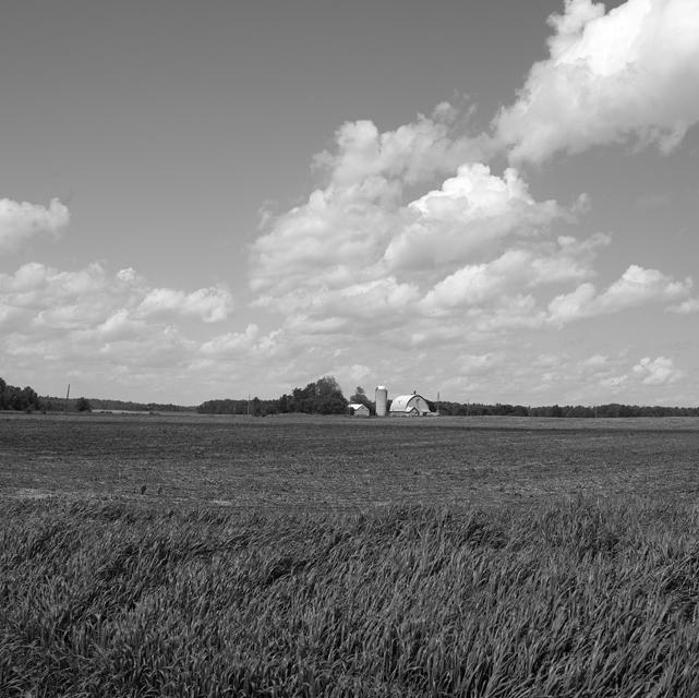 Ottawa vally field 3