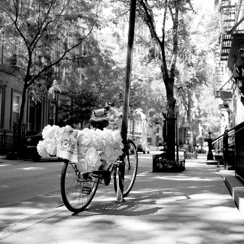 village bike.jpg