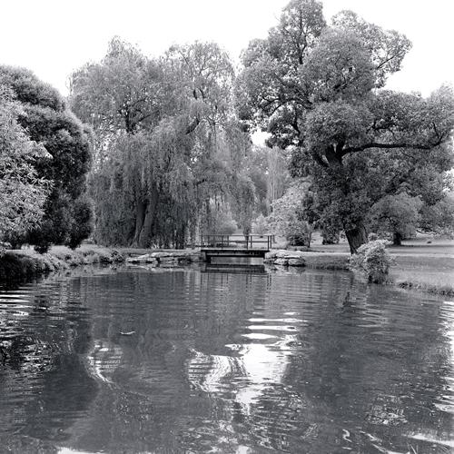 Arbouretum pond.jpg