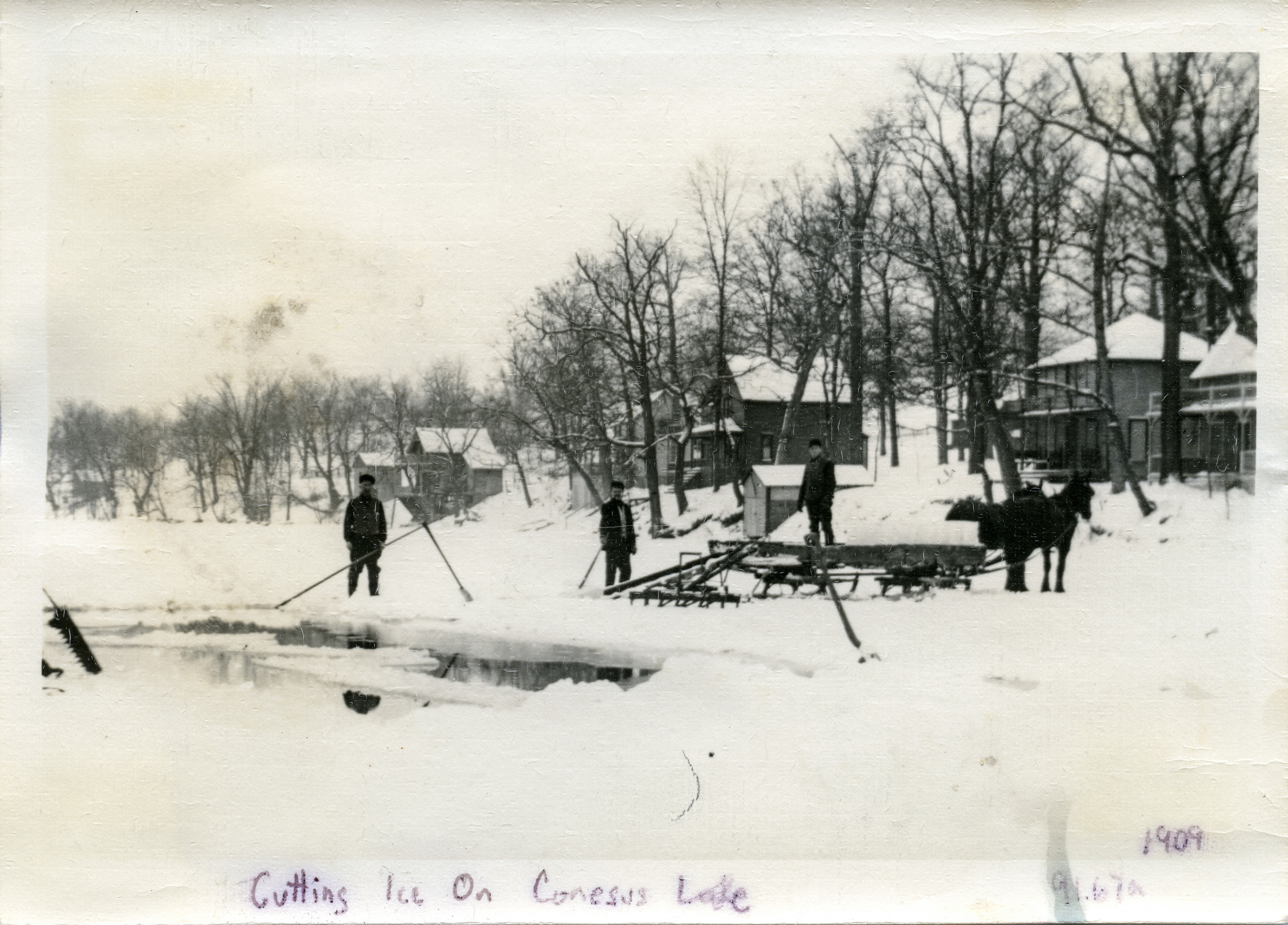 Conesus ice harvest horses and men cutting ice cottages- 1909