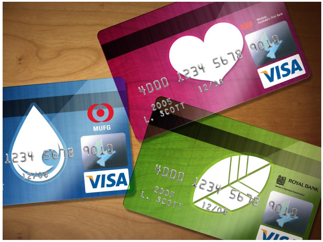 Bank cards co-branded for Visa Go