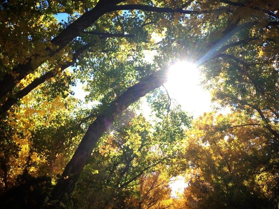 Fall in Española, New Mexico
