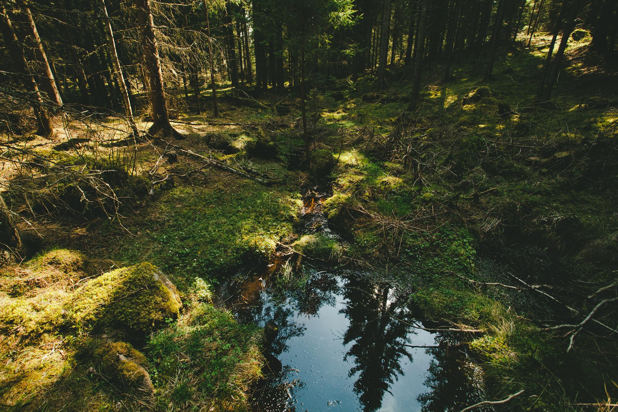 20140419_Erland_0461e-reflective-pool_IT.jpg