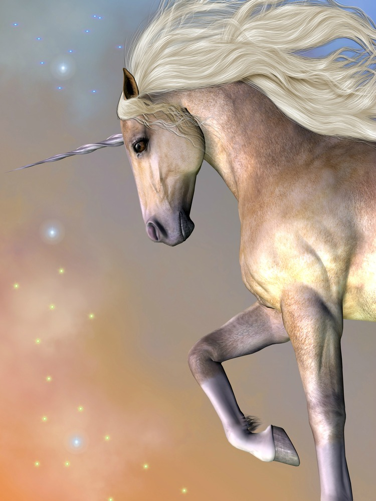 Are you looking for a unicorn? How is that working for you?