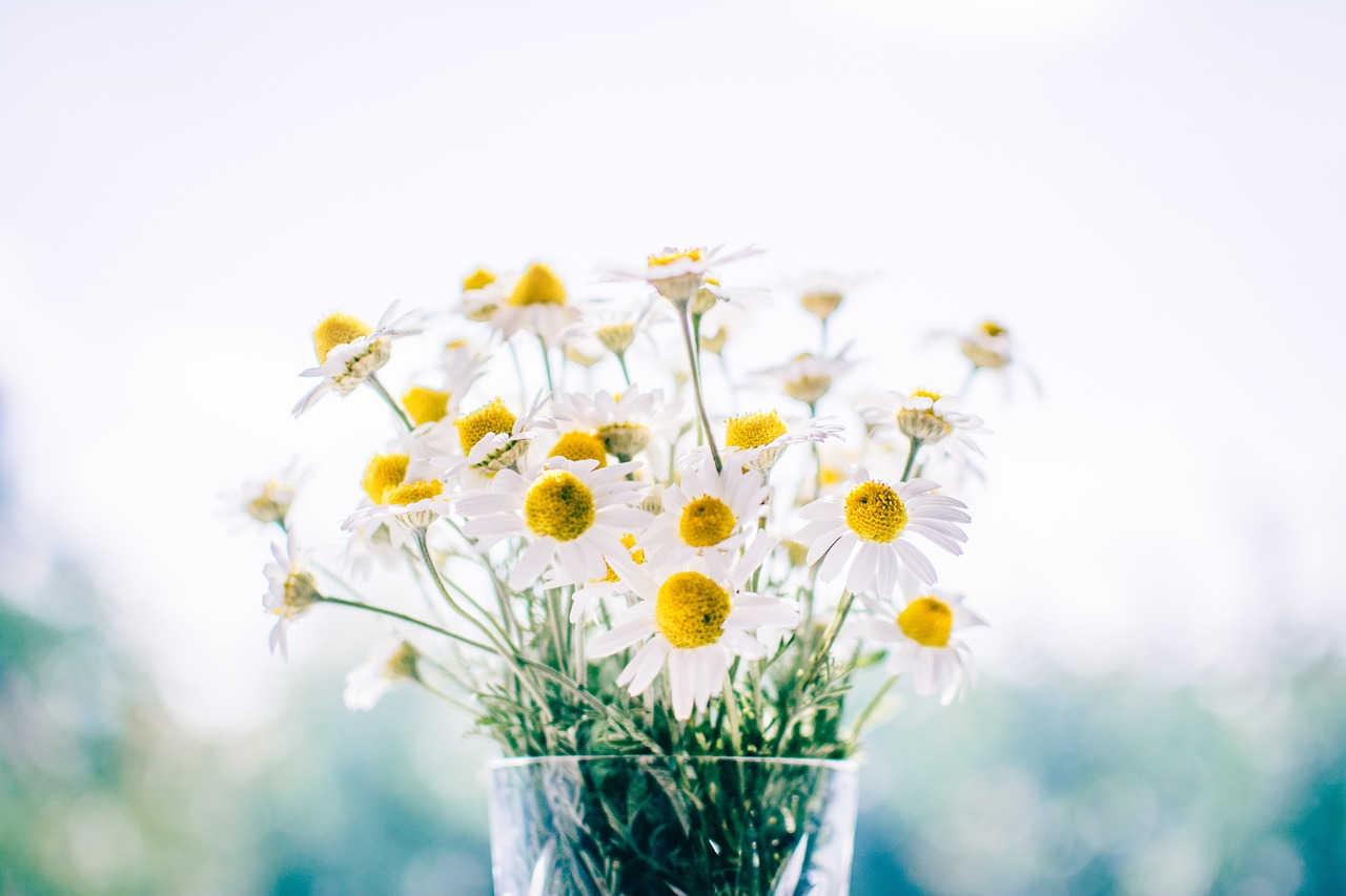 flowers handpicked.jpg