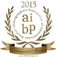 AIBP Distinguished Member Seal 2015
