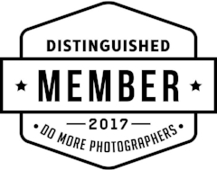 Do More Photographers 2017 Badge.png