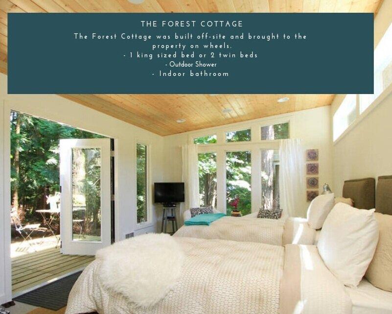 Forest+Cottage.jpg