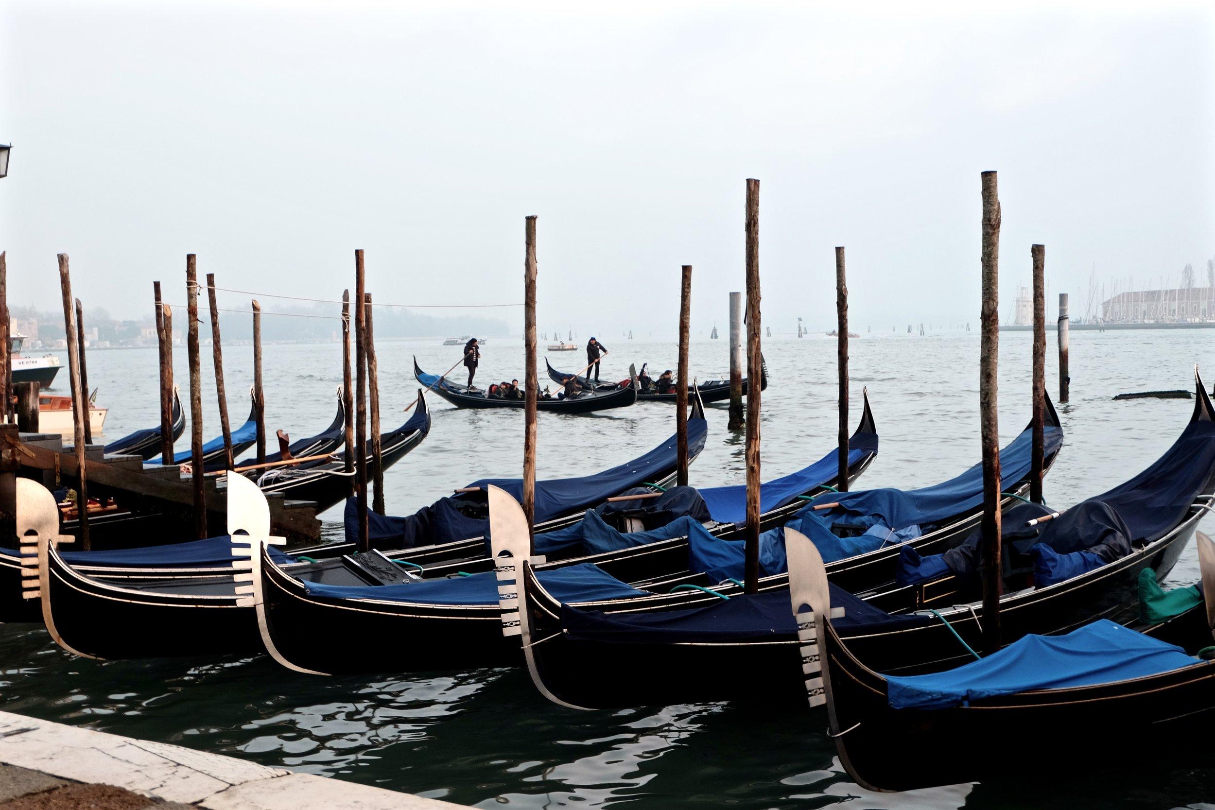 Carelle - Venice