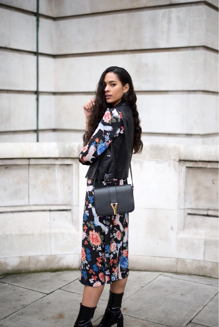 Bad Blogger - Elvira Contact